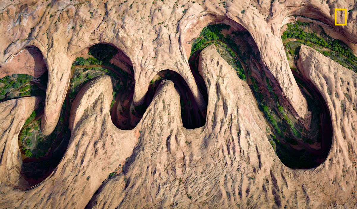 ngnp aerials peopleschoice The 2017 Nat Geo Nature Photographer of the Year Winners are Here and Amazing