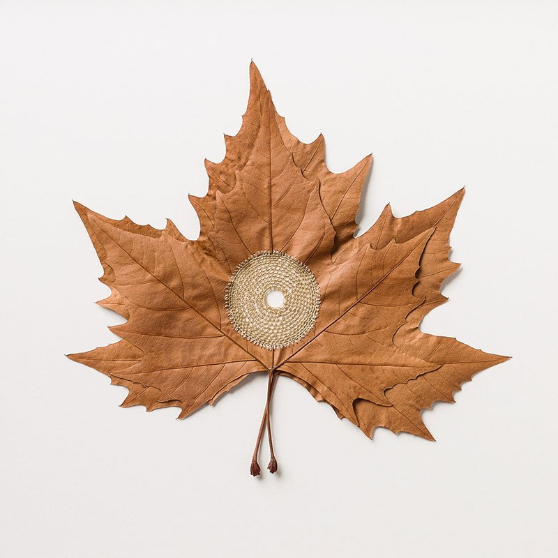 crochet leaves by susanna bauer 3 Artist Crochets New Life Into Fallen Leaves