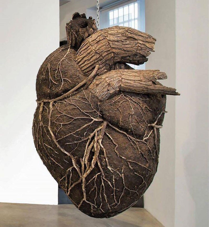 heart by dimitri tsykalov Picture of the Day: Heart and Soil