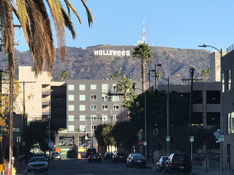 hollyweed sign Picture of the Day: Welcome to Hollyweed