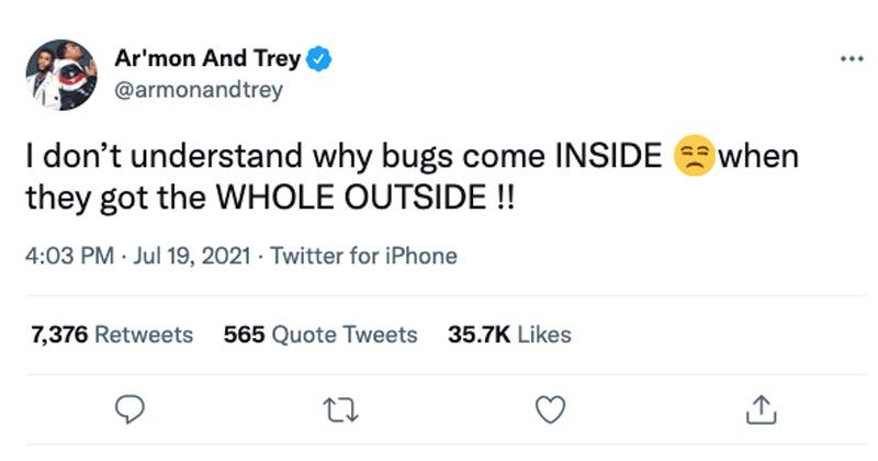 stay outside bugs tweet The Shirk Report – Volume 640